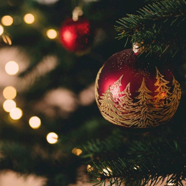 The Basics to Planning a Bespoke Christmas Party