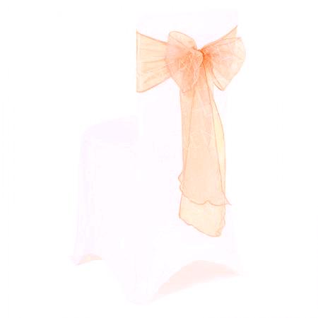 Bow - Peach