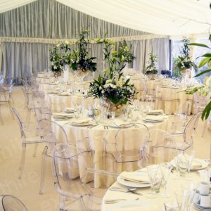 Louis Ghost Chairs will make any event look classy and modern.